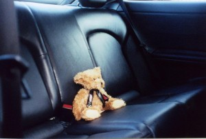 C180 Teddy
